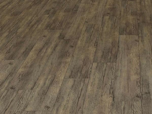 JOKA Designboden 555 XXL Valley Pine