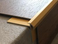 Aluminium Treppenkantenprofil 491 gold