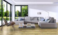 TFD Floortile Klebevinyl 1,5 Plank Pro+ 1145-2 Wohnzimmer