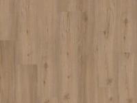 Vorschau: Klick Vinylboden Design 555 Spring Oak